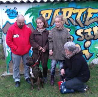 Adoption chien refuge de Bréhand - abandon chien - Côtes d'Armor - Bretagne