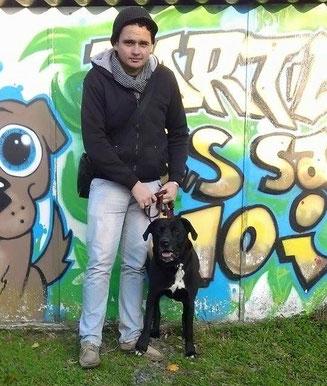 adoption chien de refuge - SPA Bretagne