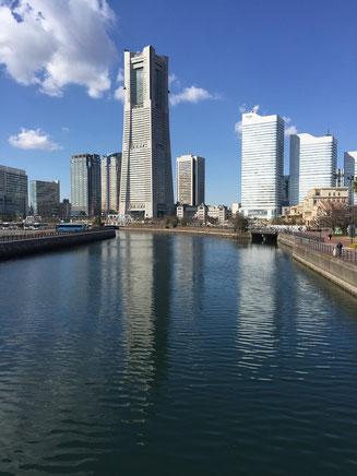 横浜市で遺産相続の無料相談・手続き代行はセンターへ(税理士・司法書士)