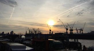 Bild: Sonnenaufgang vom Hamburger Fischmarkt aus