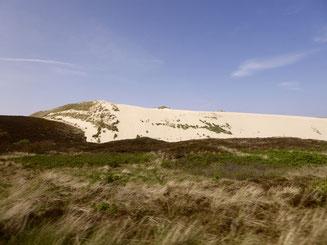 Bild: Die Wanderdüne auf Sylt