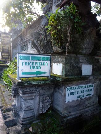 Bild: Hinweisschilder zum Weg durch die Reisfelder