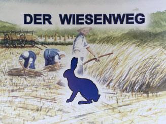 Bild: Der Wiesenweg im Naturschutzgebiet Boberger Niederung