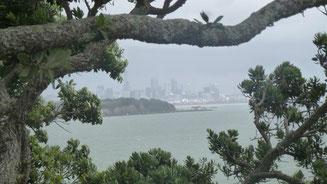 Bild: Regen in Auckland