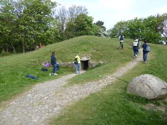 Bild: Grabhügel eines nordischen Ganggrabes aus der Jungsteinzeit