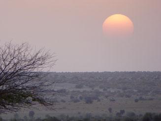 Bild: Sonnenuntergang in der Wüste Thar bei Jaisalmer, Rajasthan in India