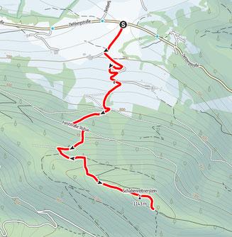 Schabenreitnerstein, Almtal, Wanderung