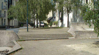Skate à Rennes, les Zanimos