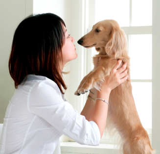 愛犬の歯の健康が気になる方はデンタルケア教室をお見逃しなく!