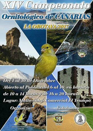 Cartel anunciador del XIII Campeonato Ornitológico de Canarias