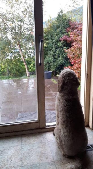 het regent buiten