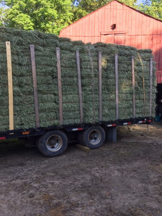 Our first load of fresh 2019 first cut hay, June 11. Picked up in Strafford: $8/bale or delivered: $9.25/bale.