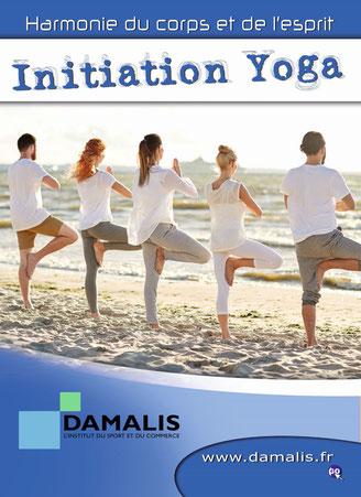 Yoga chez Damalis Formations