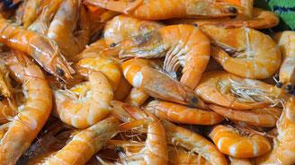 Wochenmarkt, Normandie, Meerresfrüchte, Eure