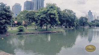 See im Lumphini Park Bangkok
