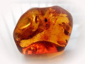 Bernstein hat einen Wachglanz, ähnlich der glatten Oberfläche von Plastik. Er ist ein organischer Stein aus Baumharz.
