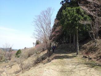 あまりにも気持ちよい天気なんで、走るのがもったいなくしばらく歩きました。と、言いつつ体力回復させました。