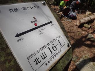 このルートの最高地点。標高794m水井山山頂。