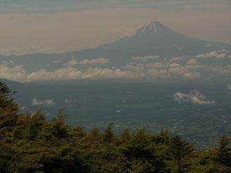 森林限界を抜けると富士山が