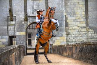 Tournage et photos shooting chevaux
