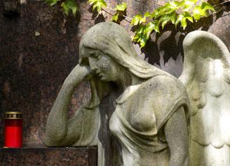 St. - Pauli - Friedhof Dresden Bild: Susann Wuschko