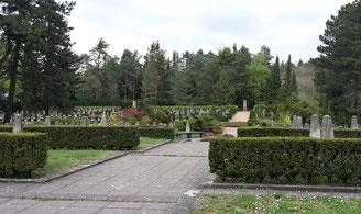 Sowjetischer Garnisonsfriedhof Dresden Bild: Susann Wuschko
