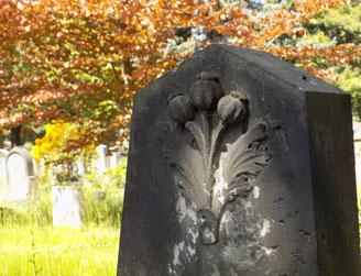 Neuer jüdischer Friedhof Dresden Bild: Susann Wuschko