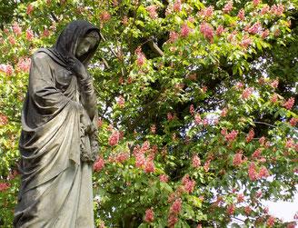 Alter Annenfriedhof Dresden Bild: Susann Wuschko