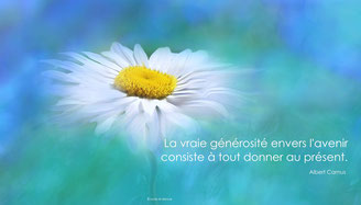Marguerite citation camus