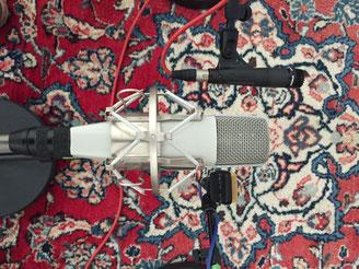 Mikrofone, Teppich Studio, Sennheiser, Shure, AKG, professionelle Aufnahme, Recording, CD-Aufnahme, Gesang aufnehmen, Instrument abnehmen
