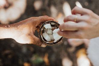 savon solide chacha huile beurre coco agriculture biologique charente naturels igredients miel charente maritime