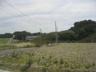 かまぼこ工場1棟。新たな工場建設は ないまま、土地整備は終了した。
