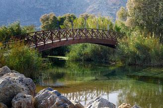 Zwei Ufer werden mit einer Brück verbunden, Natur, Sinnbild für  Verständigung von zwei Kontrahenten