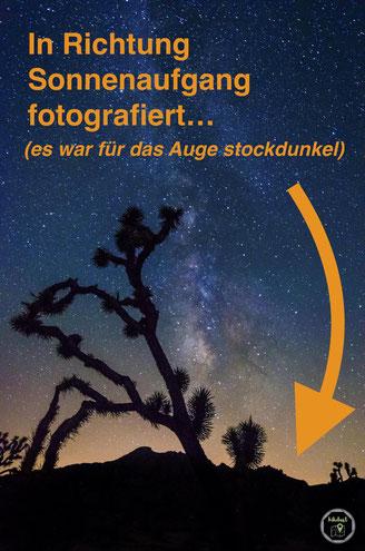 Milchstraße im Joshua Tree Sonnenaufgang
