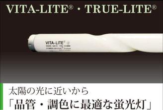 トルーライト バイタライト VITA-LITE TRUE-LITE