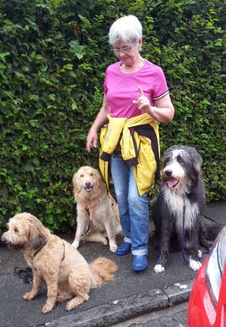 Hundepflegemama Marion ist in Sachen Erziehung ganz toll.