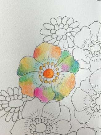 9色で描いた絵の写真