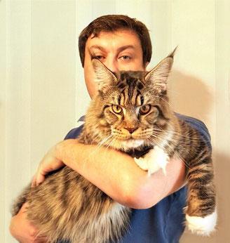 АлтанХатан котик мейн-кун
