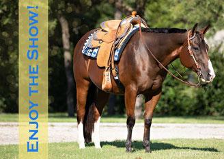 Karte, Gutschein, Birthday, bestellen, reiten, pferde, westersattel, westernreiten, quarter horse, reining, sattel, trense, sattel anpassen, sattelprofi,