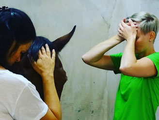 Parallele Chakrenbehandlung Pferd/Mensch