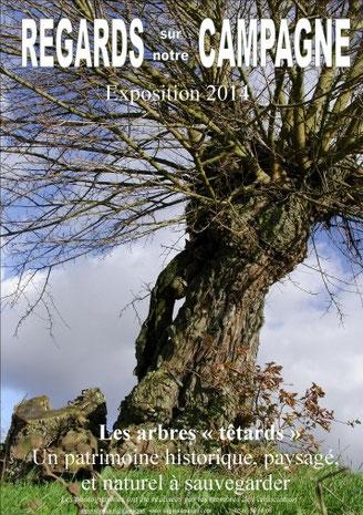 expo, photos, tarn, nature
