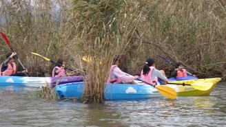 2018年10月のカヌーで琵琶湖調査の様子