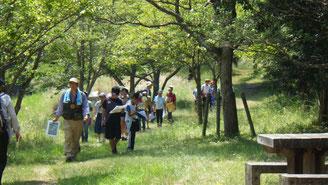 こども樹木博士認定活動by滋賀県森林インストラクター