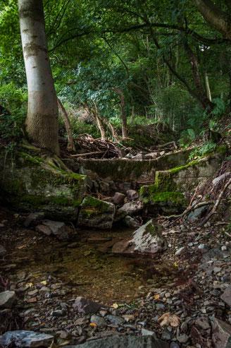 Wasserstelle im Bachlauf.