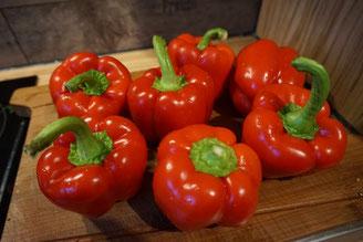 Rezept vegetarische Paprikasuppe | schnell und einfach