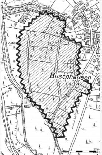 Geplante Rodungs- und Bebauungsfläche Buschhausen