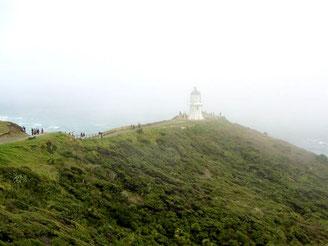 Cape Reinga, Nordinsel Neuseeland