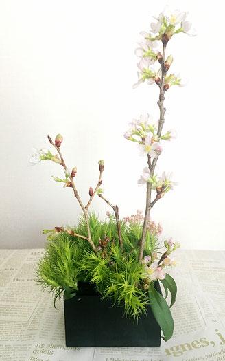美意識を高める食器とお花の世界 第6回 おうちでお花見、桜を飾ってみよう! ㉓
