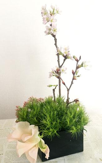 美意識を高める食器とお花の世界 第6回 おうちでお花見、桜を飾ってみよう! ㉒