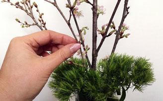 美意識を高める食器とお花の世界 第6回 おうちでお花見、桜を飾ってみよう! ⑧
